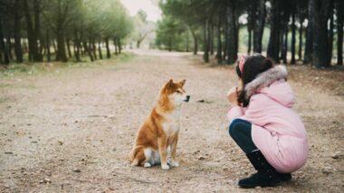 niña hablando con su perro