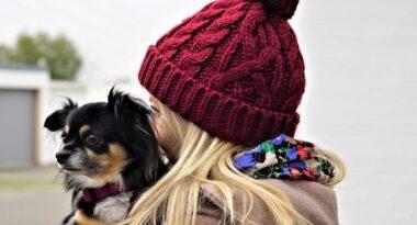 Consejos para proteger a tu perro durante el invierno